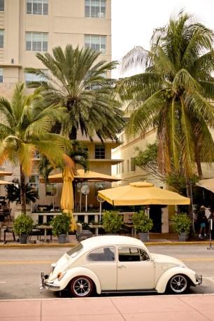 Miami-LeTONE 53