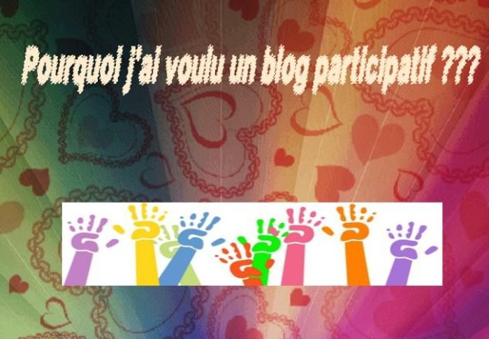 Pourquoi j'ai voulu un Blog Participatif