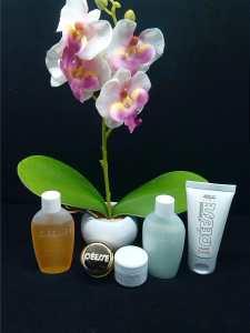 Le top des testeuses Déesse, Les cosmétiques Suisse !! Bien-Etre Produits et soins