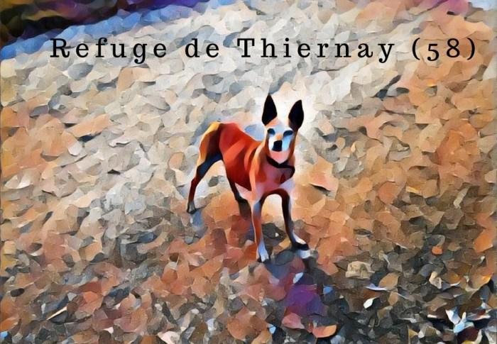 Refuge de Thiernay, suivez-moi !!!