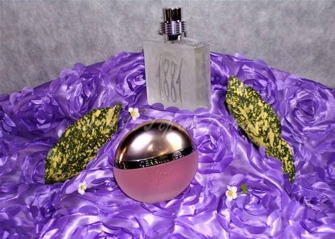 cerruti parfums