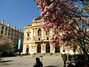 Place des Célestins en fleur, théâtre des Célestins