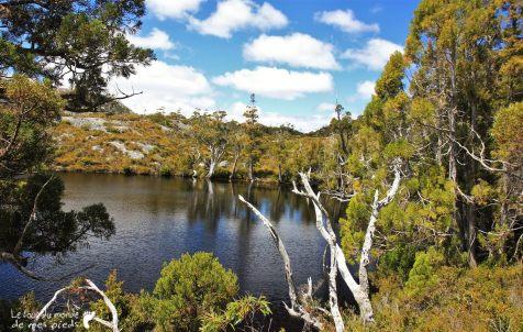 Cradle-park-tasmanie (11)
