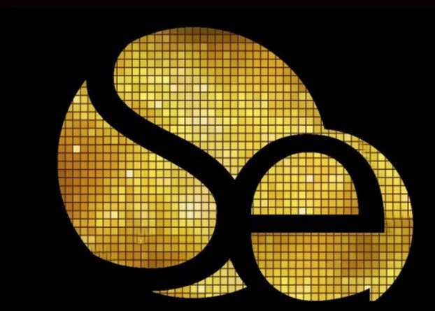 Logo de la soirée Silver night