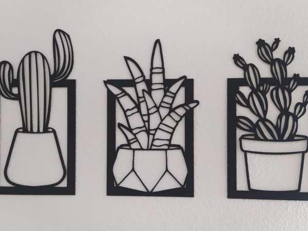 Cuadro tríptico cactus y suculentas