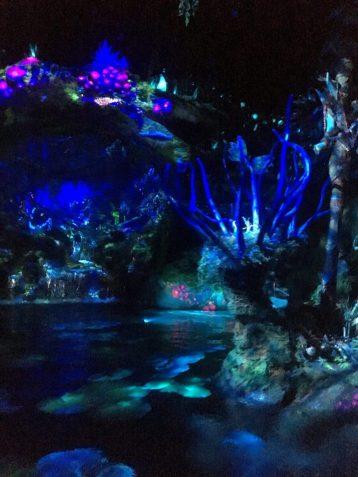 Na'vi River Journey World of Avatar Disney World