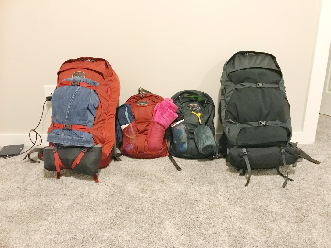 Backpacking backpacks lined up packed