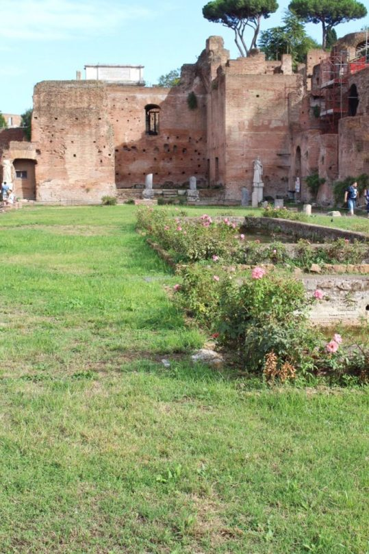 Exploring the Roman Forum in Rome, Italy