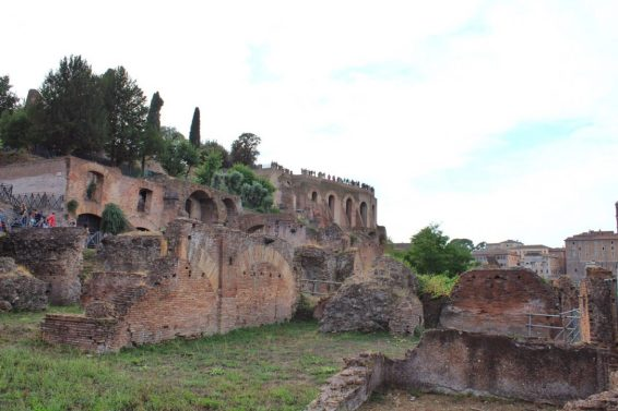 View of Palatine Hill from the Roman Forum in Rome Italy