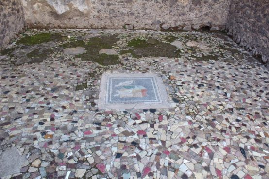 Mosaic floor inside a home in Pompeii
