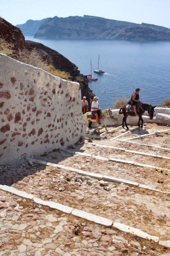 Donkeys walking down the path going down to Amoudi Bay
