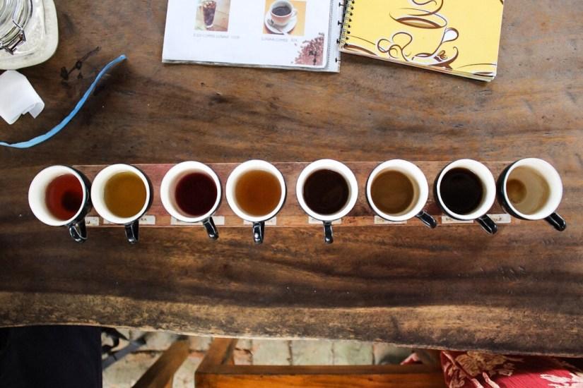 Teas and coffees at Kampung Kopi Coffee Plantation Ubud Bali