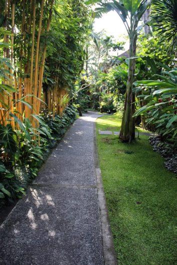 Walking through Komaneka at Monkey Forest
