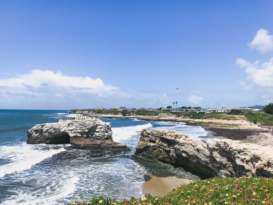 Natural Bridges State Park in Santa Cruz, California