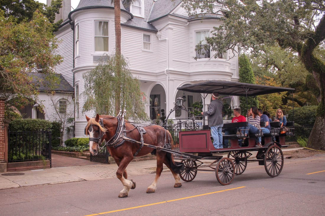Charleston horse drawn carriage