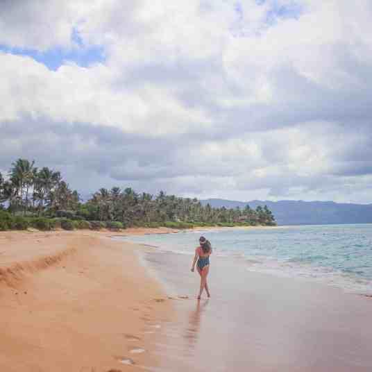 Laniakea beach in oahu hawaii