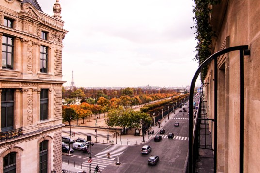 view from the hotel regina in paris