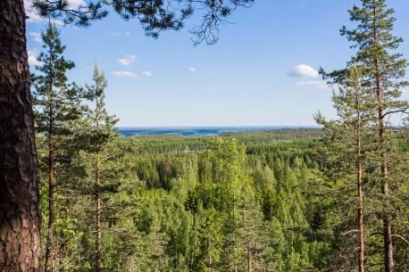 Utsikt från Amboberget