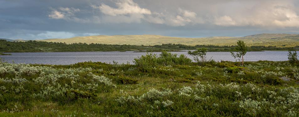 Dag 20: Bågavattsån – Lobbersjön