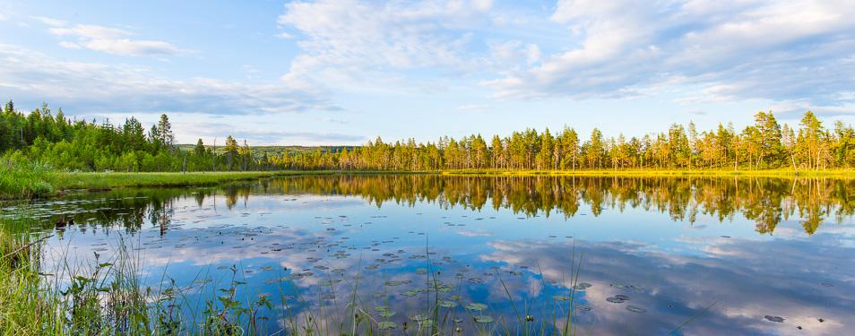 Dag 16: Åkroken – Rönnöfors