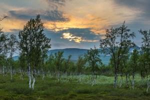 Vacker kvällsbild från tältlägret