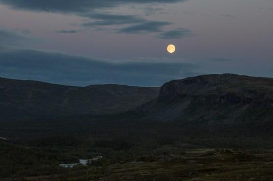 Fullmåne sista natten