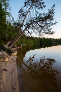 Lillsjöns spegelblanka yta