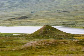Den stora ensamma kamen längs Padjelantaleden