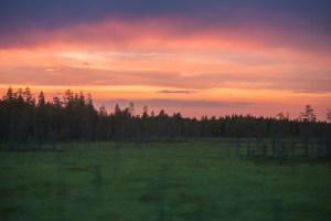 Kvällshimmel från bussen