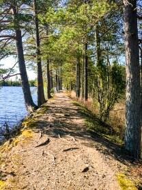 Kråksjöåsen vid Kråksjön