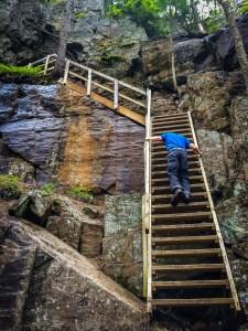 Upp till hulen