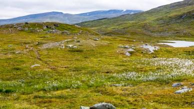 Längs Nordkalottleden
