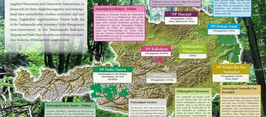 Wildnis in Österreichs Nationalparks