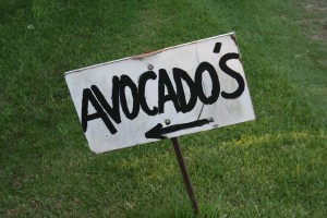 Sign for avocados with an incorrect apostrophe