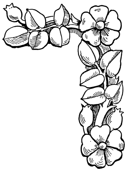 flowers coloring pages color printing flower coloring pages free