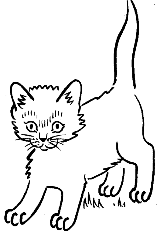Kitten Coloring Pages Coloring Pages For Girls 3 Free
