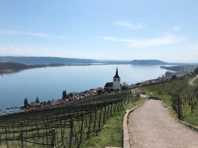 Ligerz, vineyards, church and view on Lake Biel