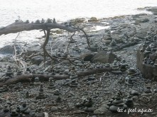 bruny-island-2