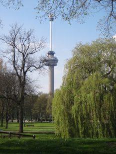 roterda euromast het park 768x1024 Conhecendo a moderna cidade de Roterdã