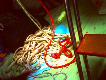 Ropes and flamingos