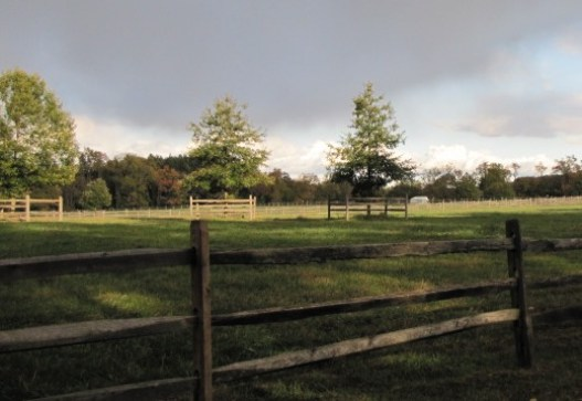a split rail fence in front of an open field with gray storm clouds in the distance