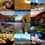 11Us Nationals Parks Tours