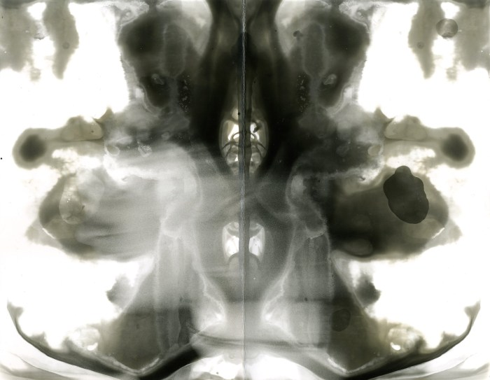 """""""Everyone has experienced the struggle of becoming comfortable with their own self. In my work, I took my inspiration from the Rorschach inkblot test and my interest in psychology. I was able to slowly overcome the emotional grey that comes with insecurities, changing not only how I perceived myself but everything around me."""" – Keyshla Roman, Hartford, CT"""