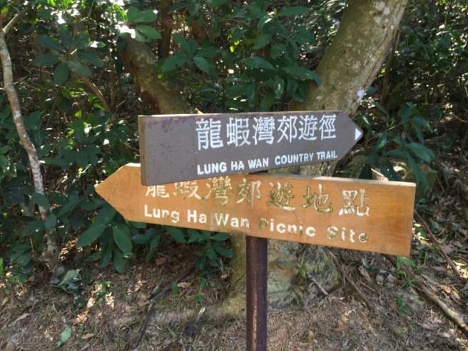 大坳門>龍蝦灣>大嶺峒>大坑墩>清水灣樹木研習徑>大坳門