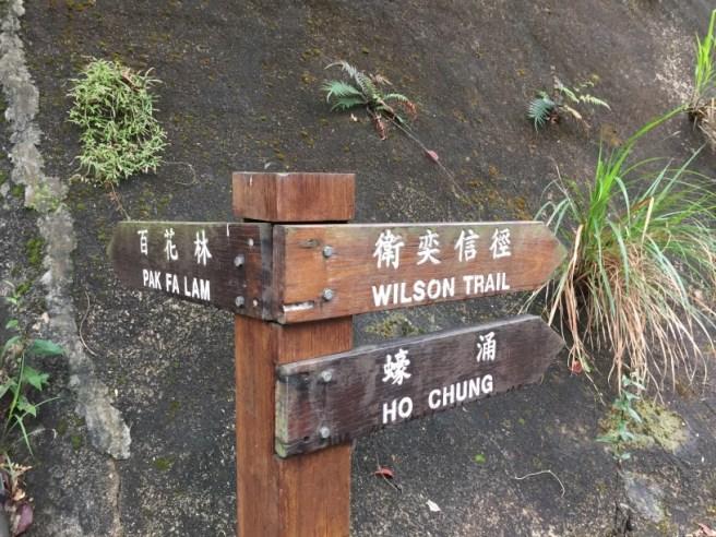 井欄樹>黃麖仔>大藍湖>東洋山