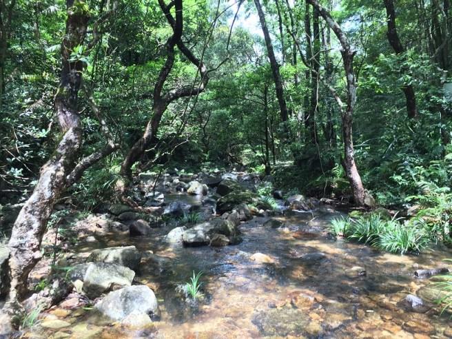 大埔滘自然教育徑 - 紅路