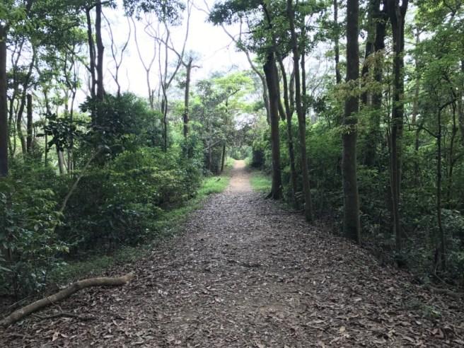 川龍>響石墳場>相思林徑>龍門郊遊徑>城門水塘