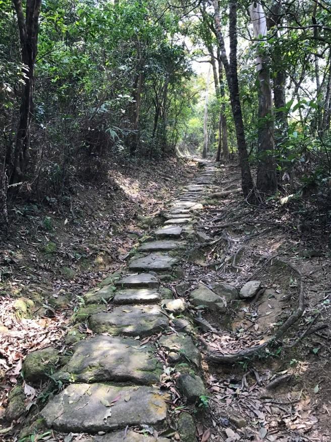 川龍>扶輪公園自然教育徑>甲龍古道>雷公田>石崗村