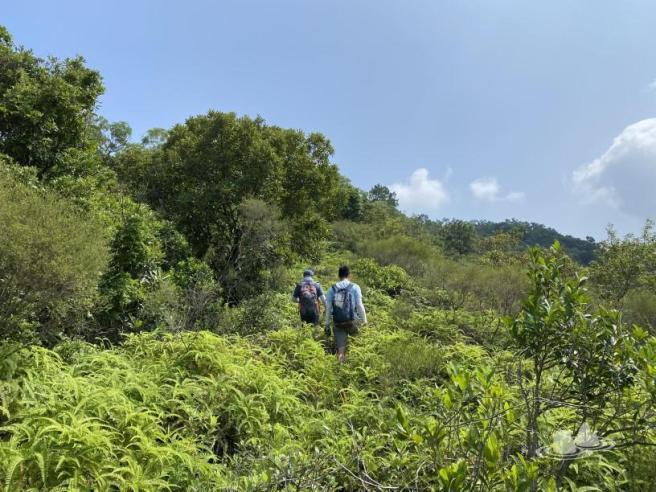 Hiking 4.10.2020 Fung Hang (10)