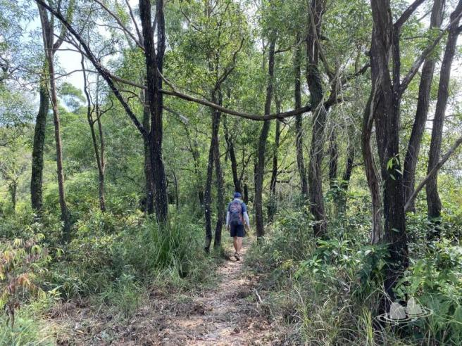 Hiking 4.10.2020 Fung Hang (11)